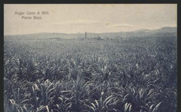 Central Azucarera